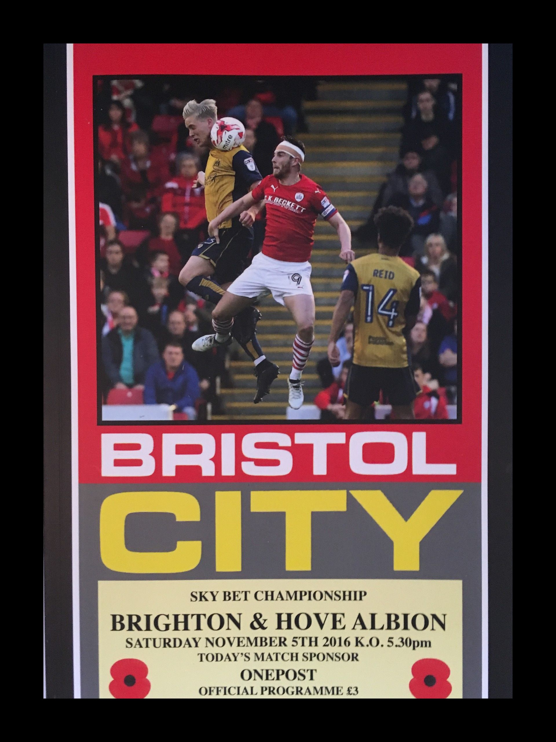 Bristol City v Brighton and Hove Albion 05-11-2016 Programme